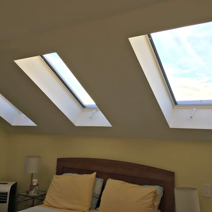 Three of the five skylights (with electric blinds)