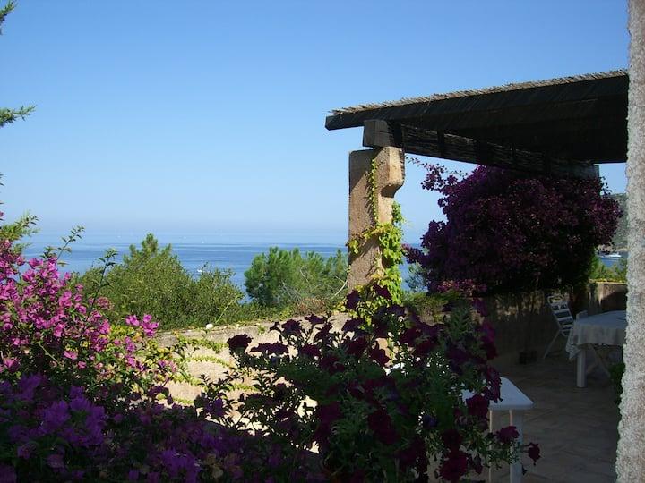 Casa Julia house - 3 br - 12km from Ajaccio