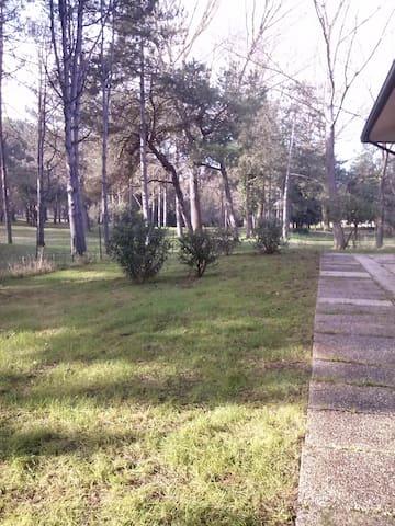 albarella affittasi villa di testa - Isola Albarella - Villa