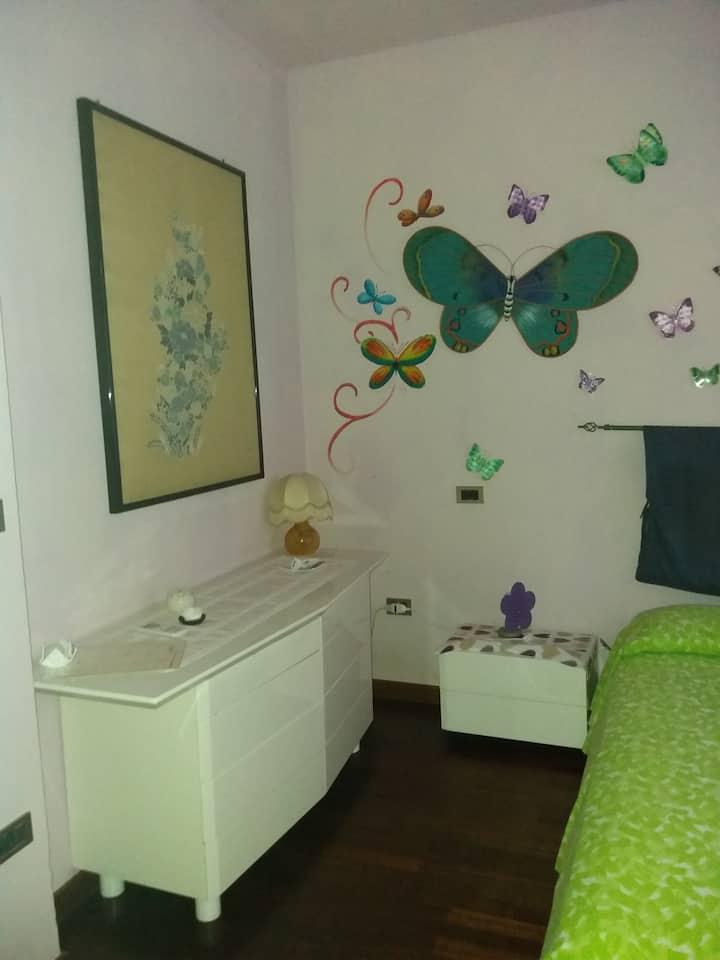 Dimora Butterfly