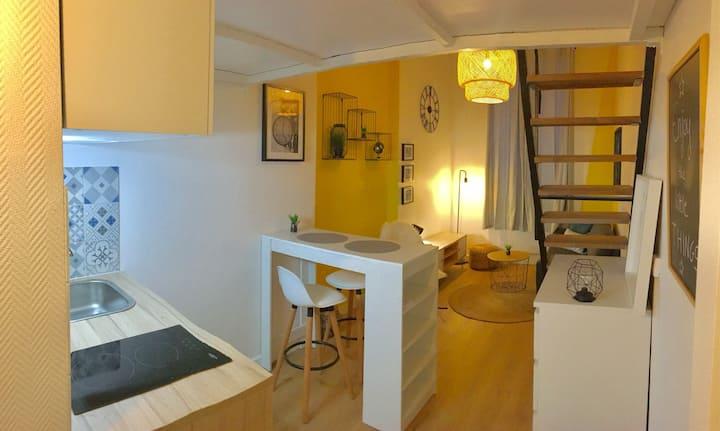 Confortable Studio Vaise - Valmy