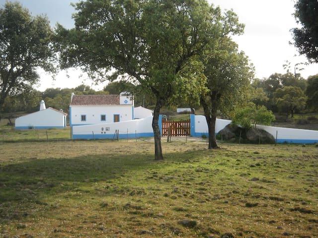 Casa de Campo em Montemor-o-Novo - Foros de Vale de Figueira