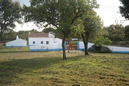 Casa de Campo em Montemor-o-Novo - Foros de Vale de Figueira - 小屋