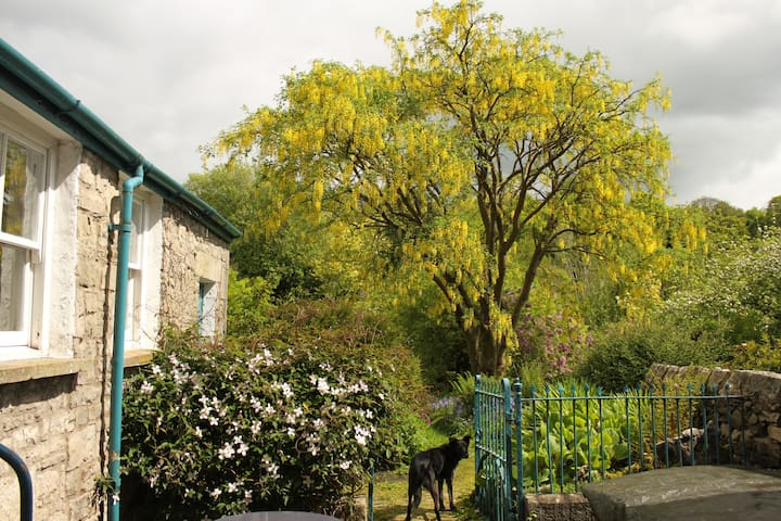 Webster Cottage, Kendal, South Lakes - Kendal - Rumah