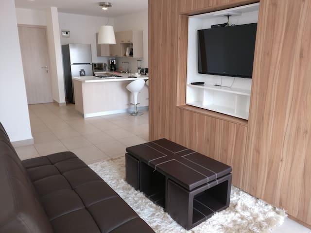 Premier Downtown Apartment with AC