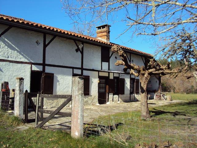 Maison landaise sur 2ha de forêt - Sore - Dom