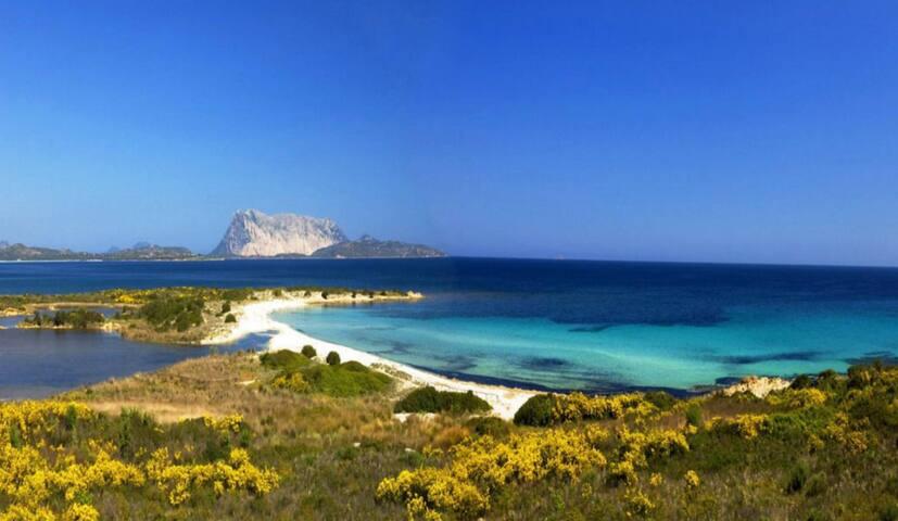 San Teodoro centro vicino spiaggia - Calabria bi2