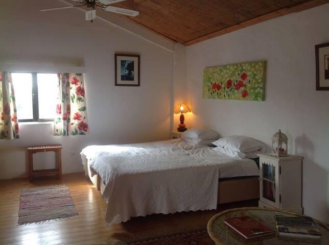 Small Studio Apartment - Bicos - Apartament