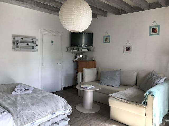 Chambre 1 avec grand lit + canapé convertible  TV canal sat