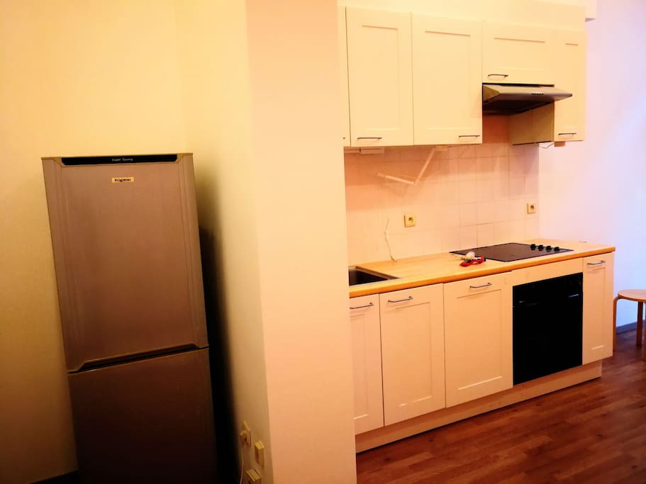 one big fridge and equipped kitchen