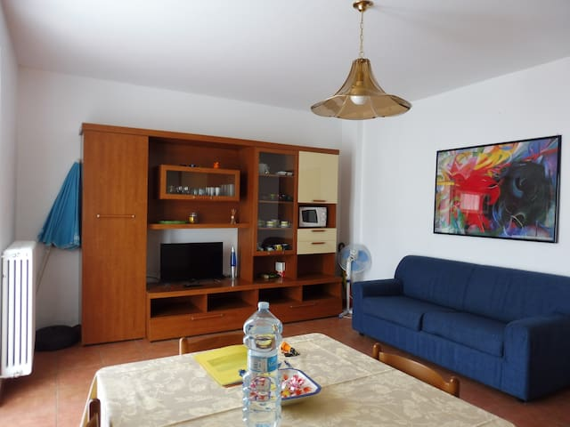 Living room with sofa bed and satellite tv