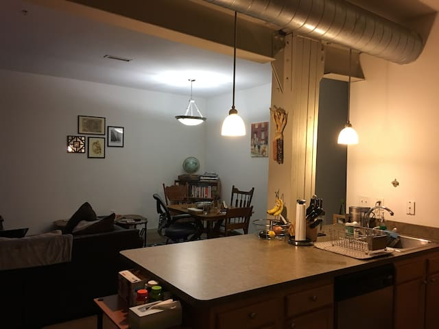Spacious Northern Liberties Two Bedroom Apt - Philadelphia - Byt