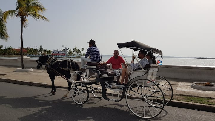 Horse carriage.