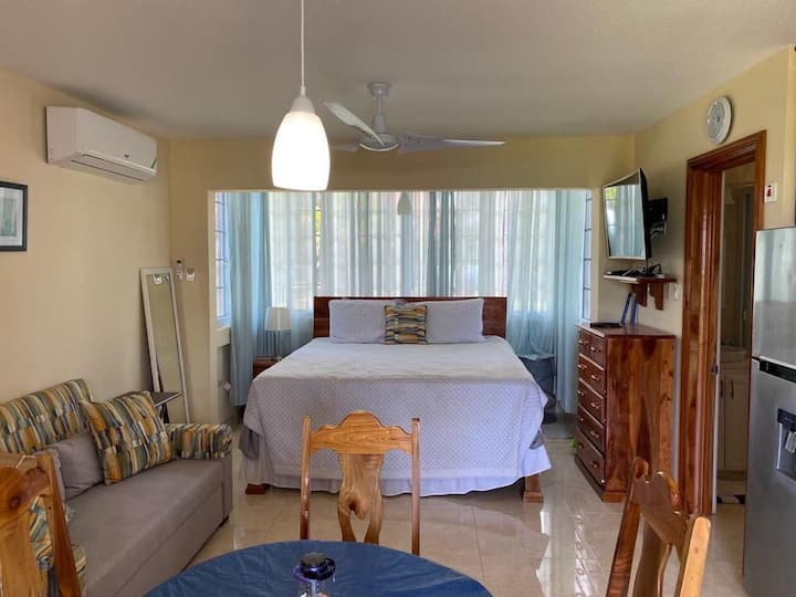 Nice remodeled studio in beachfront property