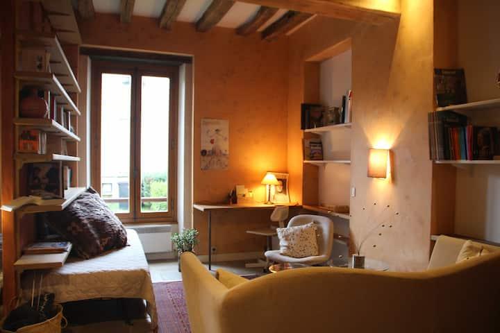 Appartement de Charme au Coeur d'Auxerre