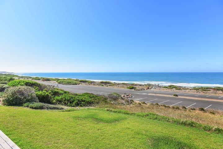 Chiton on the Rocks - Breathtaking Panoramic Coastal Views