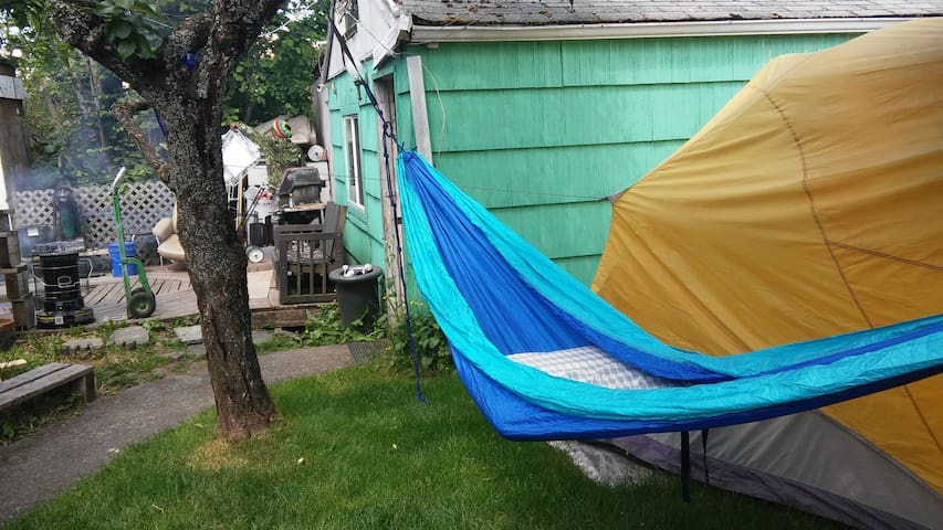420 friendly hammock in backyard
