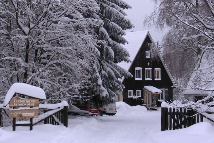 Large holiday home in Braunlage on the edge of the forest with 2 terraces and wood stove