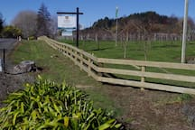 New Roadside fence to enhance the property