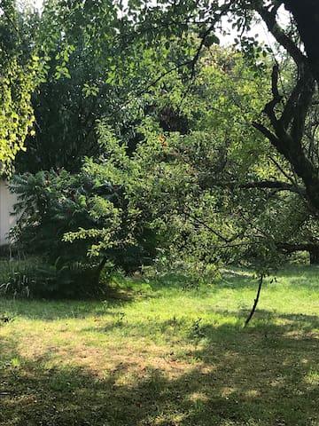 Le jardin, pour flâner