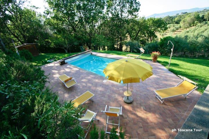Casale Marittimo Lia con piscina - Casale Marittimo - Apartment