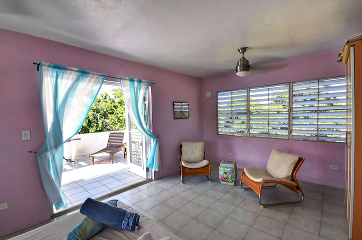 Vieques Penthouse W/Ocean View (5) - Vieques - Apartment