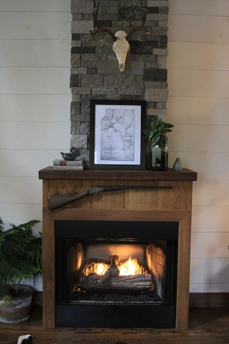 Gas fireplace and electric heat
