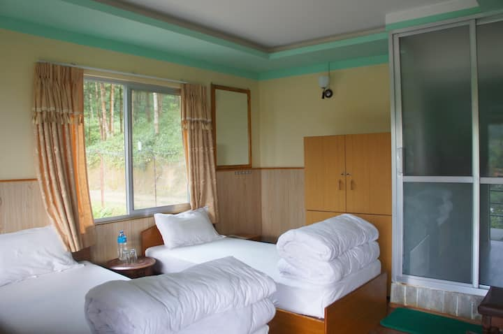 Hotel Mount Paradise  (Standard Twin Room)