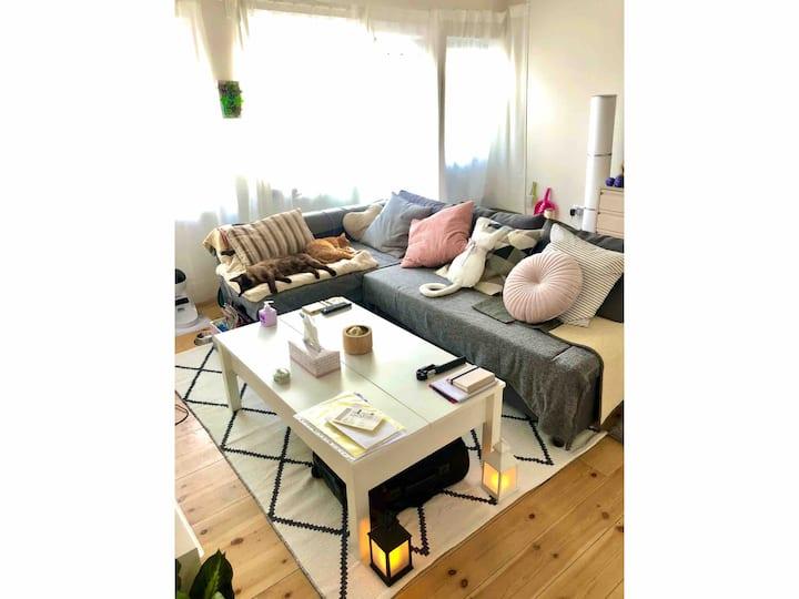 Sofá Cama grande en loft moderno y acogedor