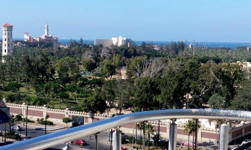 El Montazah Palace View