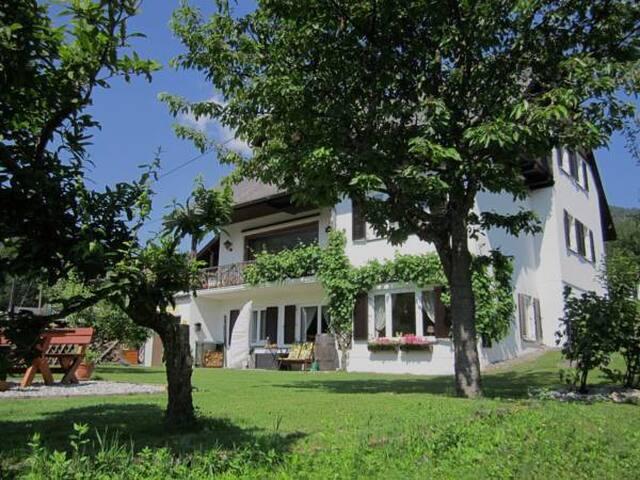 Haus Holunder voorkant van het huis met terras.