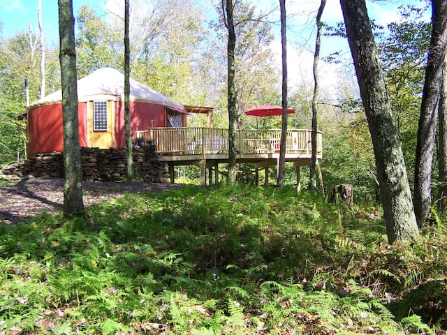 Willowemoc Wild Forest Yurt, a tranquil experience