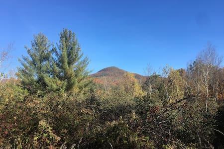 Mount Tobias Waterfall Paradise (Kid Friendly)