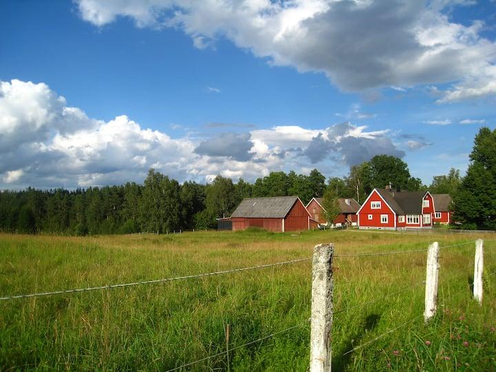 Kråkeskogsgården, naturen i stan