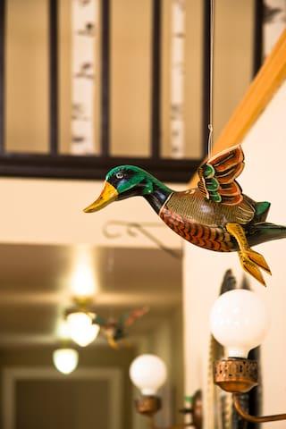 Kitchen duck