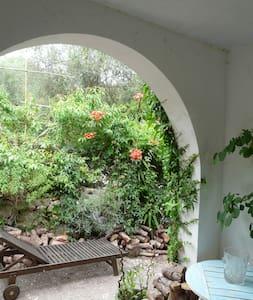 Villa Soliroc - Roquefort-les-Pins - Hus