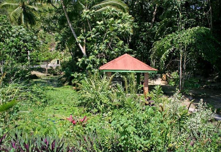 Studio idéalement situé pour visiter la Guadeloupe