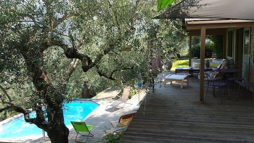 Piscine privée dans les oliviers