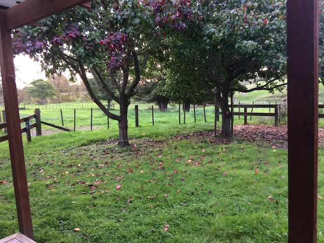 Country Life - Studio Guesthouse - Auckland - Domek gościnny