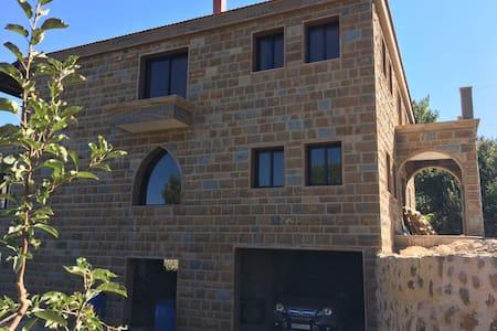 Saba Guest House - Villa