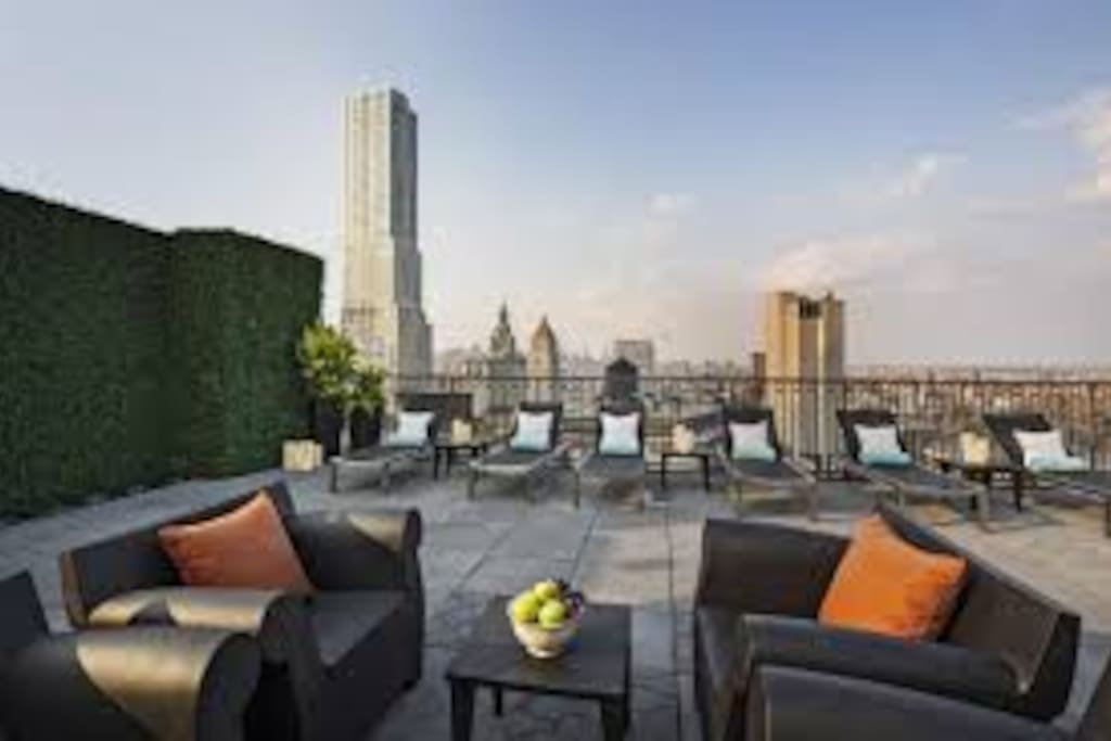 Rooftop with 360 views of FIDI including BK Bridge, Freedom Tower, and  Statue of Liberty