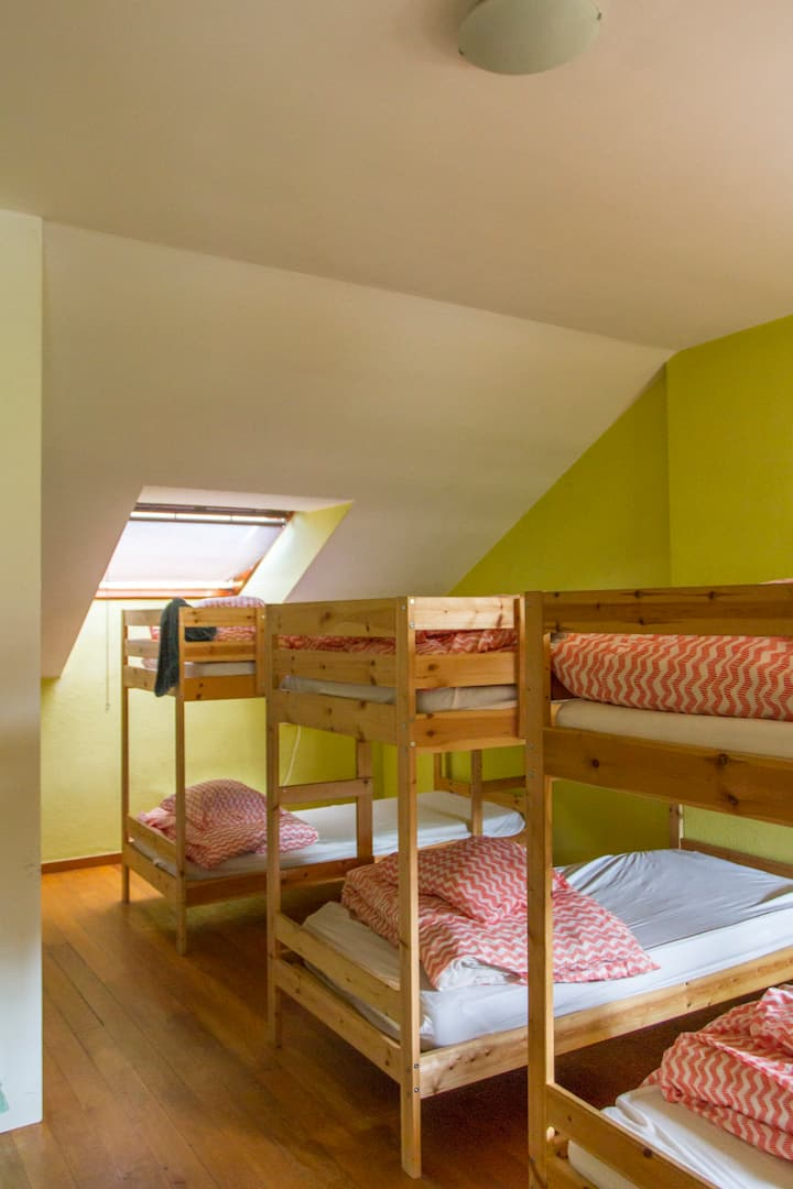 Habitación luminosa, comoda y tranquila.