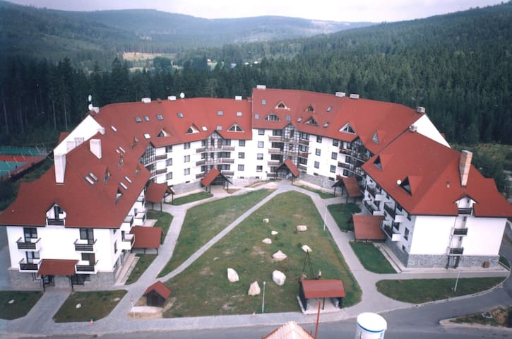 Apartment for 2+3 persons in Harrachov R66626