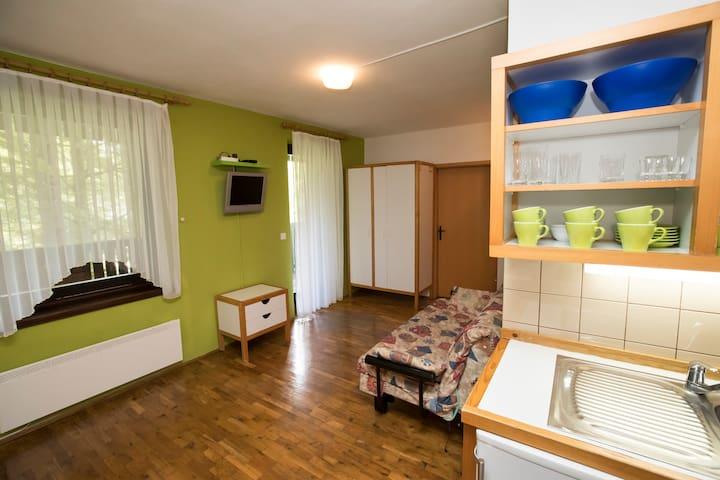 Apartment VOGEL - Ukanc