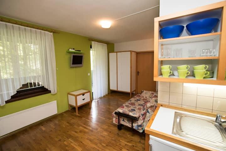 Apartment VOGEL