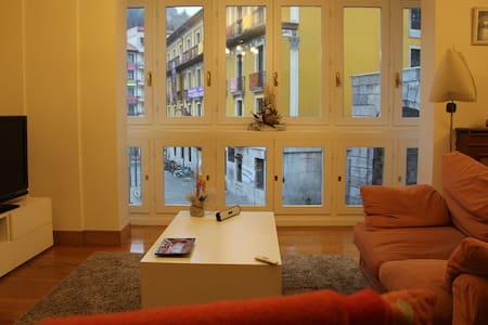 Apto. Ideal para familias y grupos en Tolosa - Tolosa