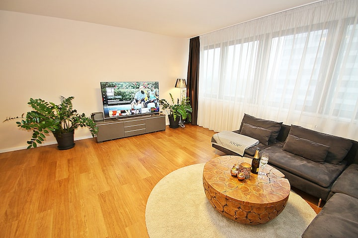 Big one bedroom apartment near center, parking.