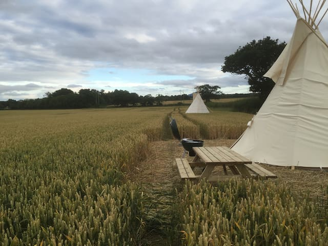 Tipi Glamping in Worcestershire - Wichenford - Tipi