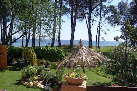 """Villa """"pieds dans l'eau""""  + Jardin - Santa-Maria-Poggio"""