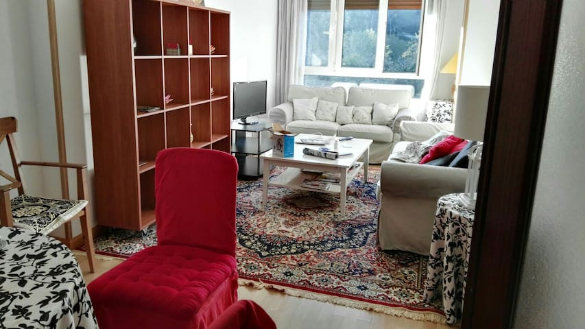 Rustic style apartment, city center - Cangas de Onís - Appartement